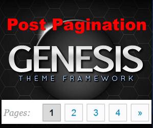 Добавить и оформить пост-нумерацию постов в Genesis Themes без плагина