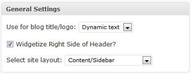 Добавить пользовательскую тему логотипа StudioPress Genesis